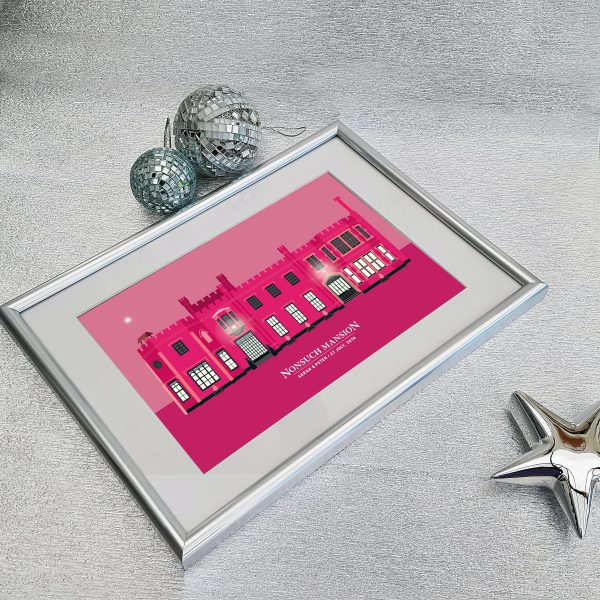 Nonsuch Mansion Pink in Silver Frame