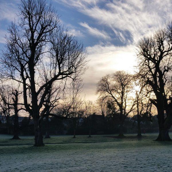 Carshalton Frost