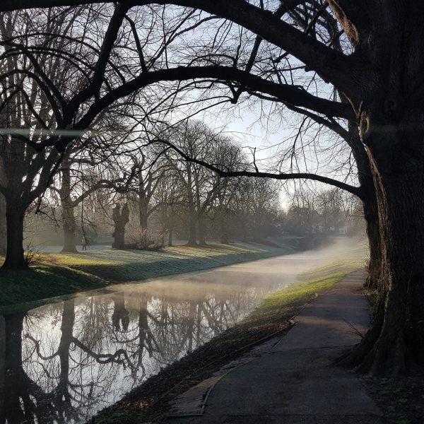 Carshalton Mist