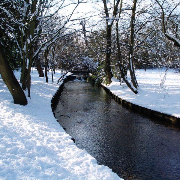 Carshalton Grove Wandle