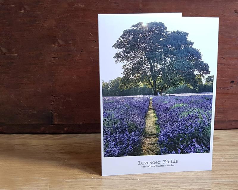 Lavender Fields thumbnail card