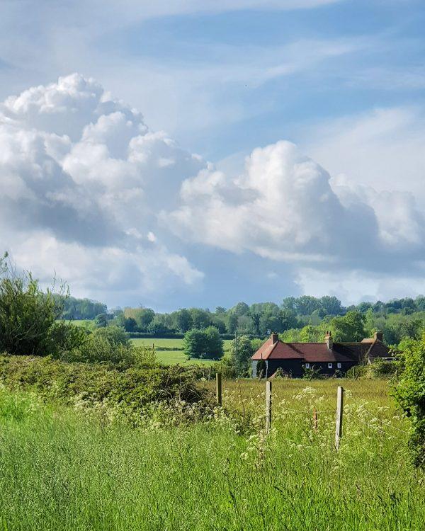 Little Woodcote Estate