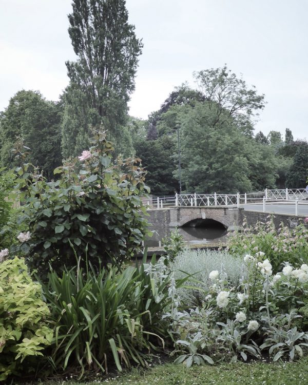 Carshalton Ponds Bridge